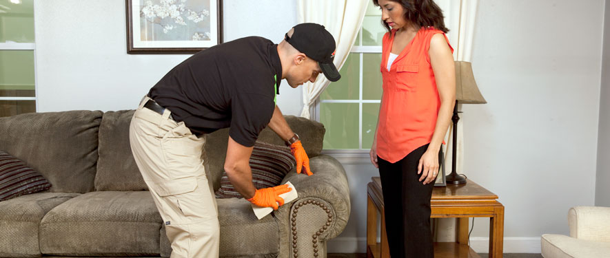 Middletown, NJ carpet upholstery cleaning