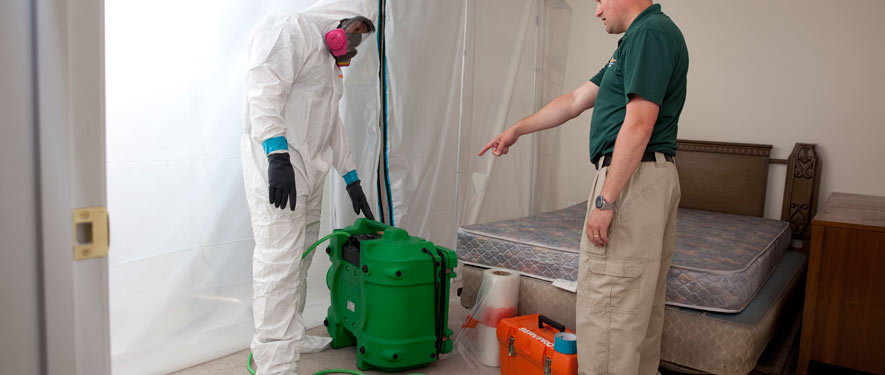 Middletown, NJ mold removal process